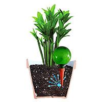 Plantpal krukbevattning, grön-Automatbevattning för krukväxter, grön