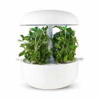 Frökapsel till Smart Garden inomhusodling - Mentha ssp