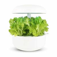 Frökapsel Plantui Smart Garden - Sallad, söt ljusbladig, Frökapsel till Smart Garden inomhusodling - Lactuca Sativa Multiblond 56