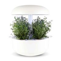 Frökapsel Plantui Smart Garden - Timjan-Frökapsel till Smart Garden inomhusodling - Thymus vulgaris