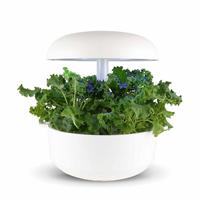 Frökapsel Plantui Smart Garden - Grönkål, Curled Green-Fröer till Grönkål, Curled Green