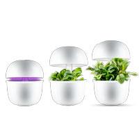 Plantui 3e med justerbar ljusenhet för inomhusodling