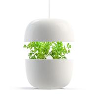 Plantui 3 Garden, vit-Inomhusodling med hydrokultur-vattenodling-Plantui-3-Garden
