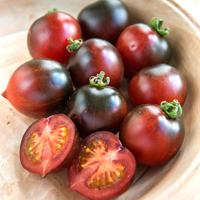 Tomat Indigo Cherry Drops-Frö till ovanlig tomat Cherry Drops