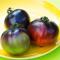 Tomat Indigo Apple-Frö till ovanlig tomat Indigo Apple
