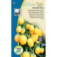 Afrikansk äggplanta Aubergine, Golden Eggs-Frö till Afrikansk äggplanta - Aubergine, Golden Eggs