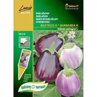 Aubergine Mix - Beatrice/Barberea,