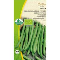Böna Organic, French Bean - Argus-Frö till Böna Organic - Frensh Bean - Argus