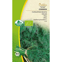 Dill Organic Common-Frö till Dill Organic - Common