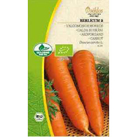 Morot Organic Berlicum 2-Frö till Morot Organic - Berlicum 2