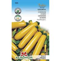 Squash Goldena-Squash goldena- frö