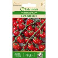 Fröer till Tomat 'Gardenberry' F1