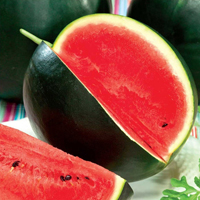 Vattenmelon, Red Star-Fröer till vattenmelon watermellon, red star