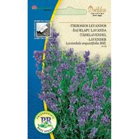 Lavendel augustifolia#-Frö till Lavendel augustifolia
