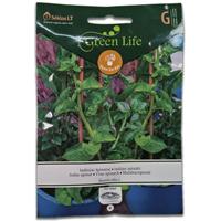 Malabarspenat Vine Spinach#-Frö till Malabarspenat