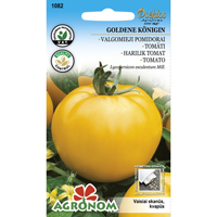 Tomat Goldene Königin-Frö till Tomat - Goldene Königin
