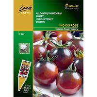 Tomat Indigo Rose, svarta tomater - indigo rose