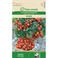 Tomat Vilma-Frö till Tomat - Vilma