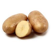 Mandel, sättpotatis-Sättpotatis till mandelpotatis