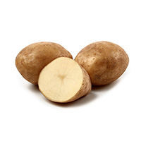 Montreal, sättpotatis-Sättpotatis Till dtidig potatis Montreal
