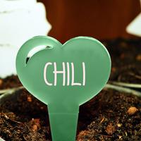 Blomskylt Hjärta, Grön-Växtetikett i forma av ett hjärta