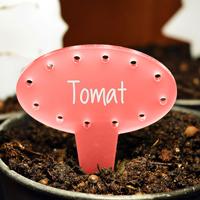 Blomskylt Oval, Röd-Växtetikett oval