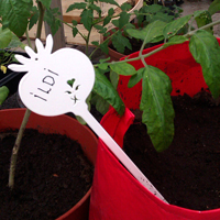 Såsticka vit-Såsticka i järn som växtskylt