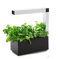 Herbie Inomhusodling - Herb:ie 23 - Svart-Indoor garden Herbie - inomhusodling i hydrokultur