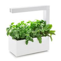 Herbie Inomhusodling - Herbie LED - Vit-Indoor garden Herbie - inomhusodling i hydrokultur