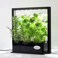 Mini Plant Factory PMF-M10 (Eco Herb)-Mini Plant Factory inomhusodling