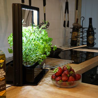 Odlingsstation för nära tillgång till köksväxter