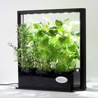 Mini Plant Factory PMF-M10 (Eco Herb)-Mini Plant Factory inomhusodling