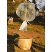 Vintertäckning av ungt träd med fiberdukshuva och kokosmatta