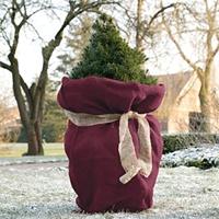 Jutesäck liten, Blackberry-Vinterskydd för växter jutesäck