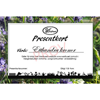 Presentkort via E-post 100kr-Presentkort via epost från Wexthuset