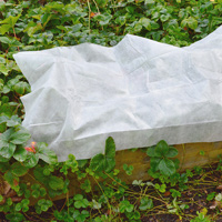 Kraftig fiberduk till växter 30g, 32 kvm