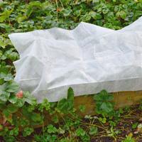Fiberduk 30g, 3,2x10m - 32kvm-Kraftig fiberduk till växter 30g, 32 kvm