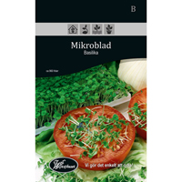 Frö för odling av Mikroblad - Basilika