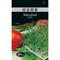 Frö för odling av Mikroblad - Purjolök