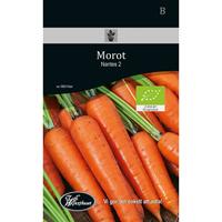 Frö för odling av ekologisk Morot - Nantes 2