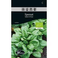 Frö för odling av Spenat - Geant D