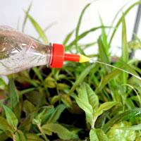 Smart bevattningslösning att användas tillsammans med en petflaska.