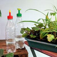 Bevattningslösning för frösådd och sticklingar