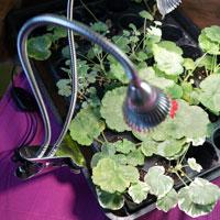 Växtbelysning Gemini med två armar 12W