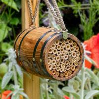 Bihotell Bee Barrel tunna för solitärbin