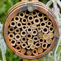 Närbild på hålstorlek i Bee Barrel bihotell