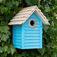 New England fågelholk, Blue, Fågelholk för småfågel