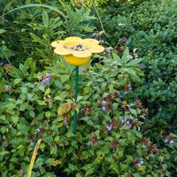 Fågelmatare Kronblad, gul-Fågelmatare med gula kronblad i keramik
