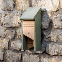 Fladdermusholk 'Bat Box' upphängd på stenmur.