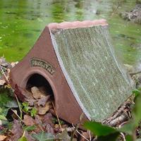 Grodhus - Frogitat Frog & Toad home, Paddhus - Bo och övervintring